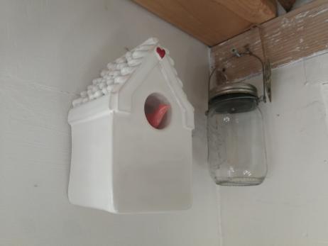 whiteredheartpinkbird